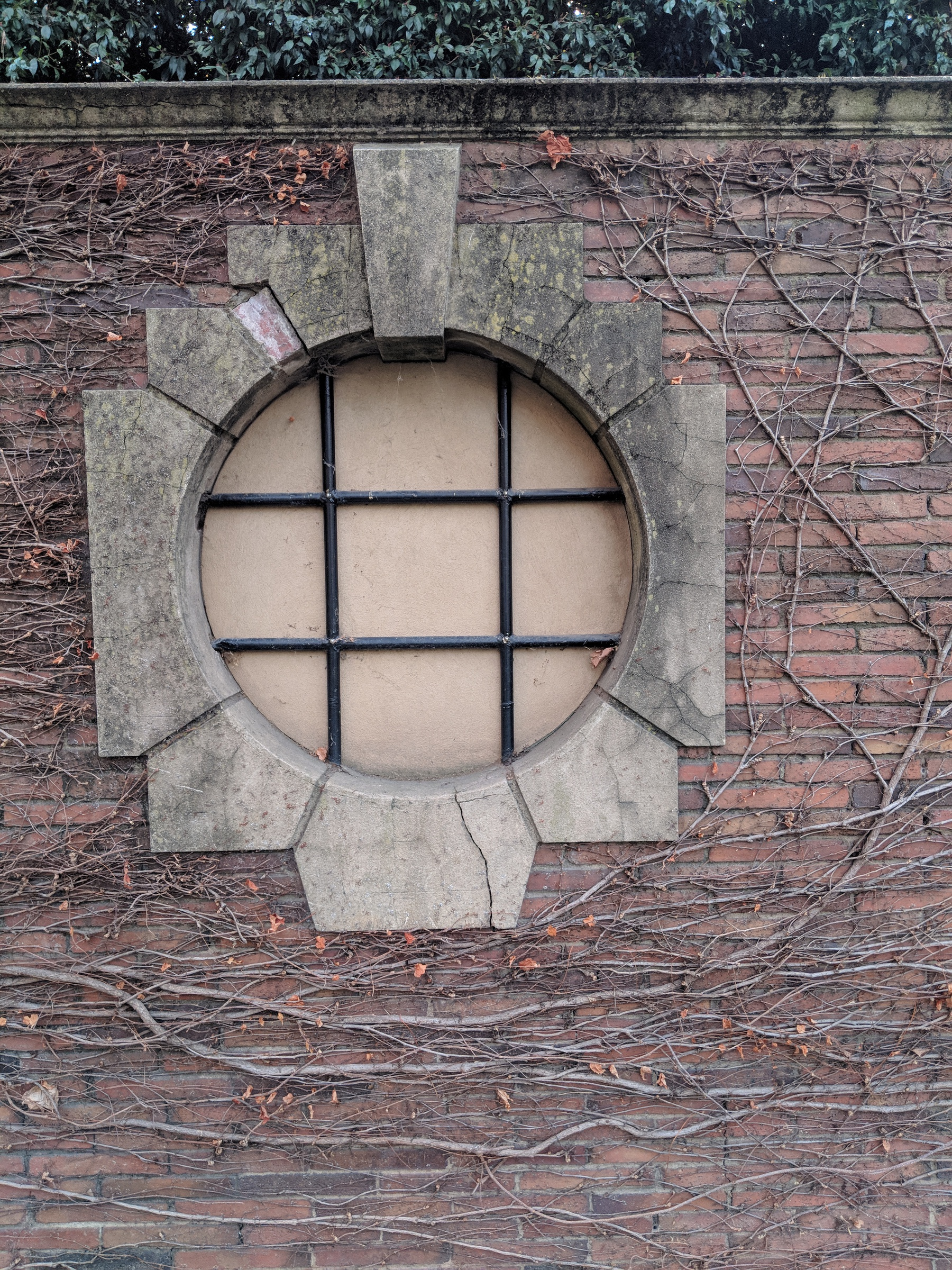 A window in a red brick wall. There is a crack here, but it's small and subtle. Branches of ivy grow on the wall around, and they are currently leafless and bare. One branch of ivy has grown up around the bottom and up the side of the window to half-encircle it.